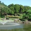 カメリアヒルズCC池№3