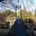 中山CC吊り橋№1